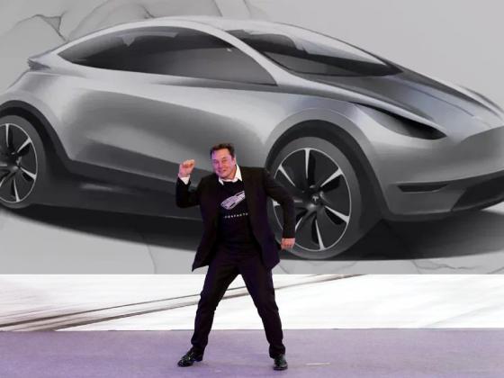 Tesla 25000 Car